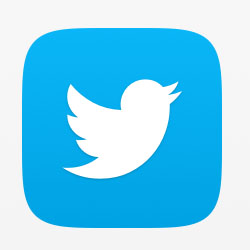 Image result for twitter app icon